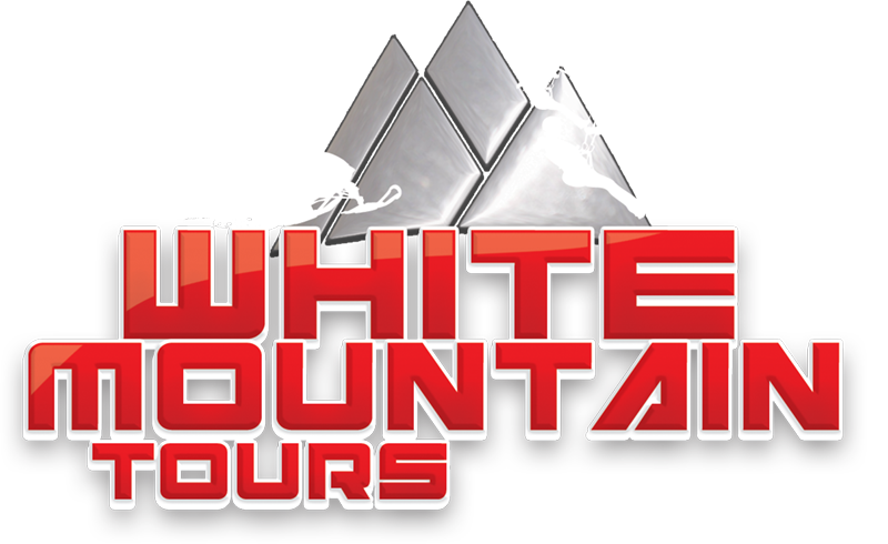 10% Off White Mountain Snowmobile Tours